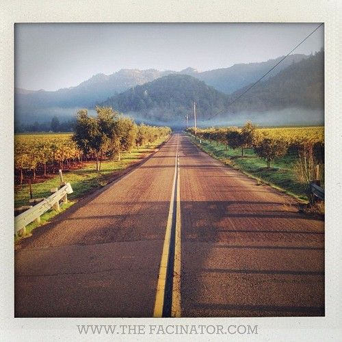 On the road to Calistoga Ranch, Napa Valley