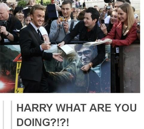 tweeted by tom felton himself. i love him. Look at the guy with the camera in the background hahaha :'D
