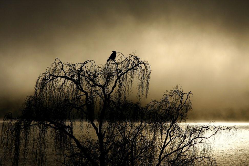 schottland-foto-loch-ness.jpg (972×648)
