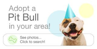 BSL/Pit Bull Causes
