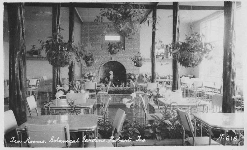 Botanical Gardens Tearooms In Hobart Tasmania In The 1950s
