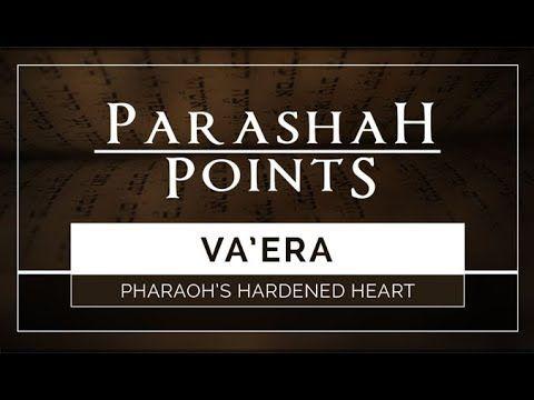Parashah Points: Va'era – Pharaoh's Hardened Heart - 119