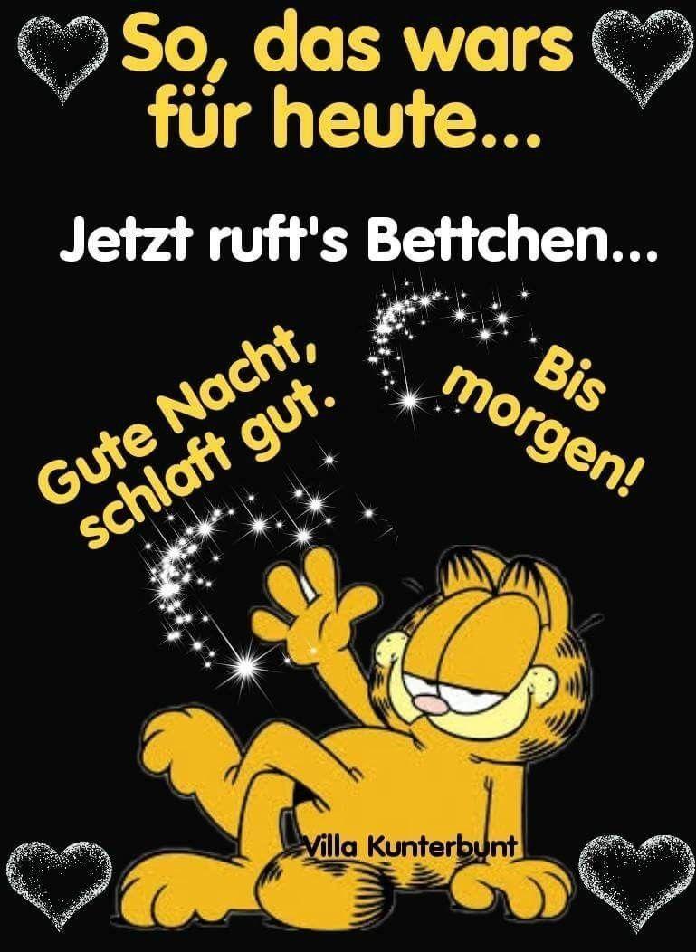 Kurze Gute Nacht Geschichte Für Kinder Grumpy Cat Garfield Grumpy
