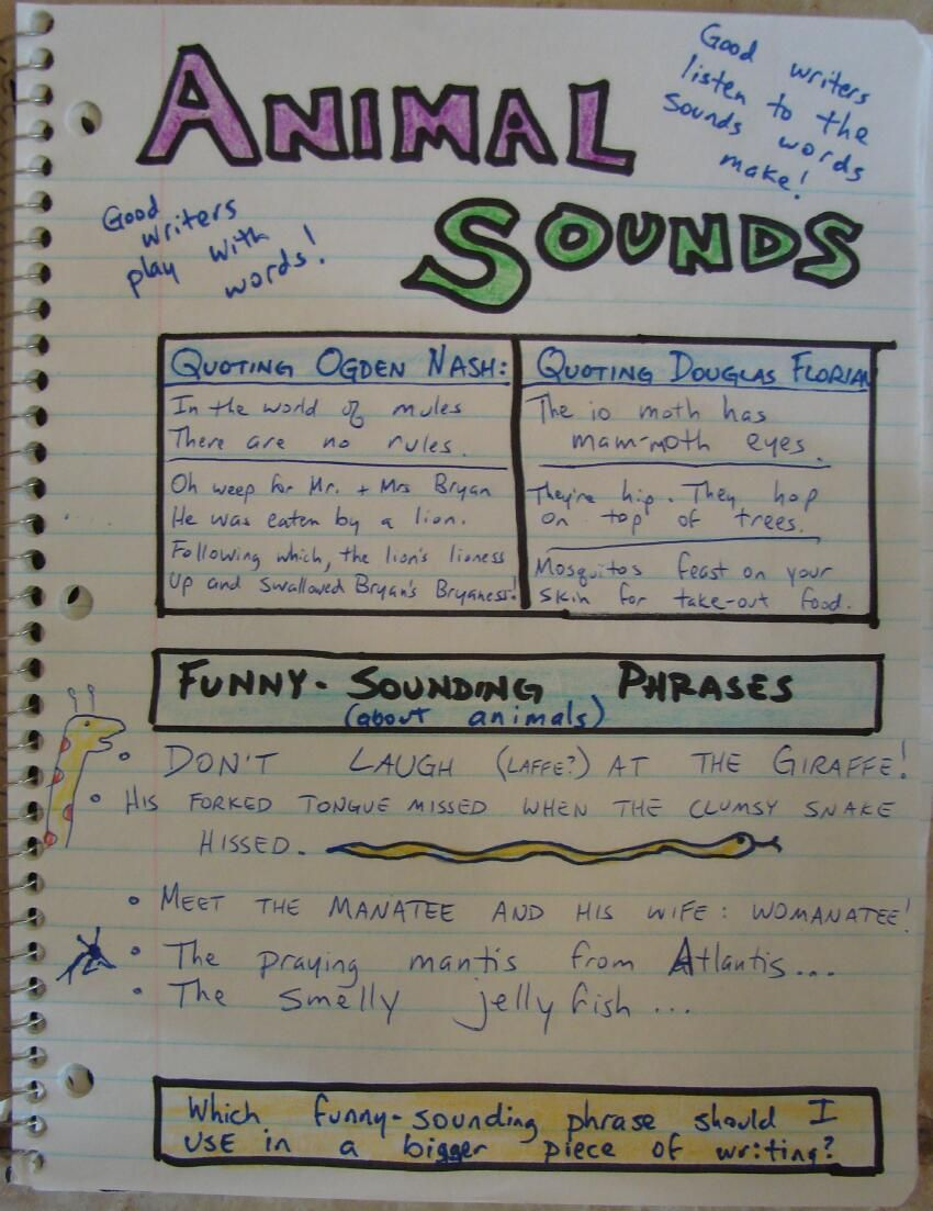 A Writer S Notebook Lesson That Celebrates Word Play About Animals Writers Notebook Writing Prompts For Kids Personal Narrative Writing