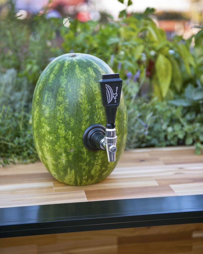 Watermelon Keg Tap | Perfect for making watermelon margaritas ...