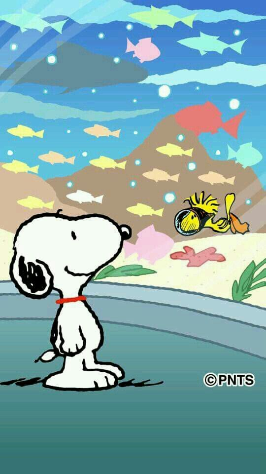 Snoopy beautiful