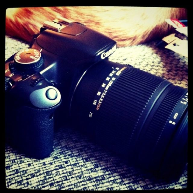 Sigma 18 250 Zoom Lens Zoom Lens Photography Lens