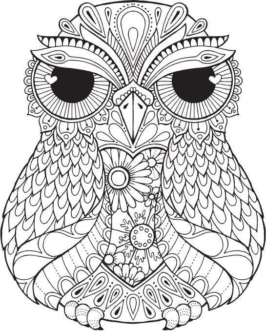 Lana Owl - Colour with Me HELLO ANGEL - coloring, design, detailed - copy coloring pages of cartoon owls