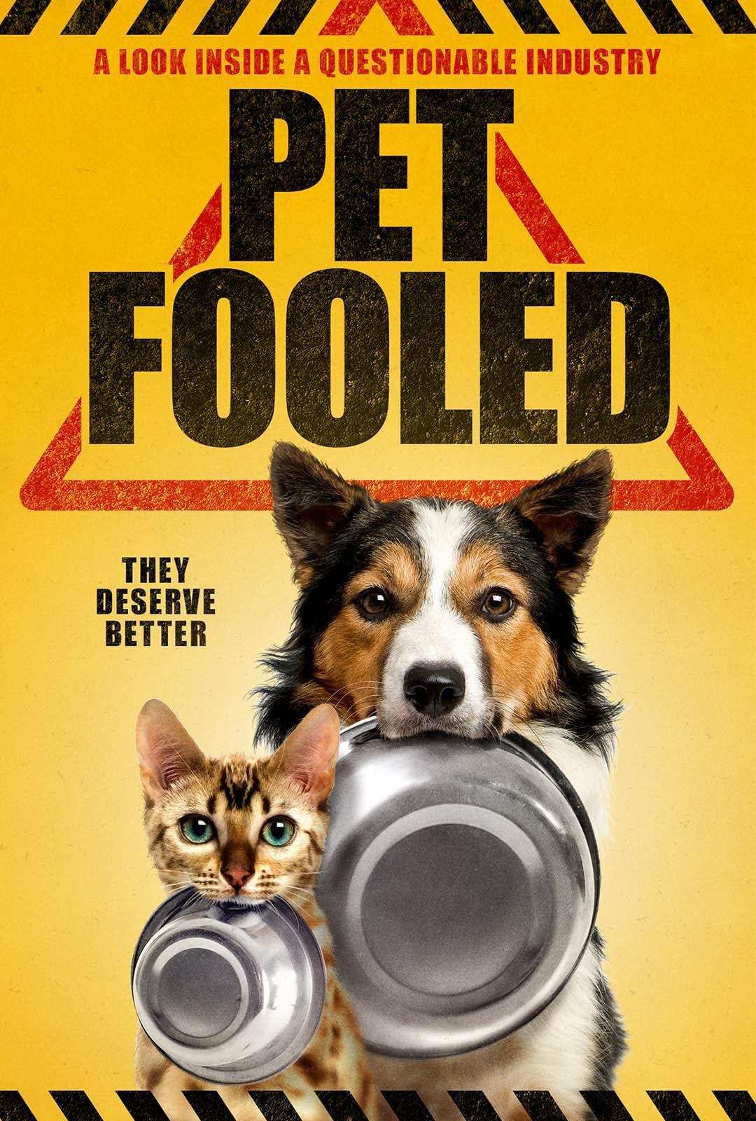 Pet Fooled Food Animals Natural Pet Healthy Cat Food