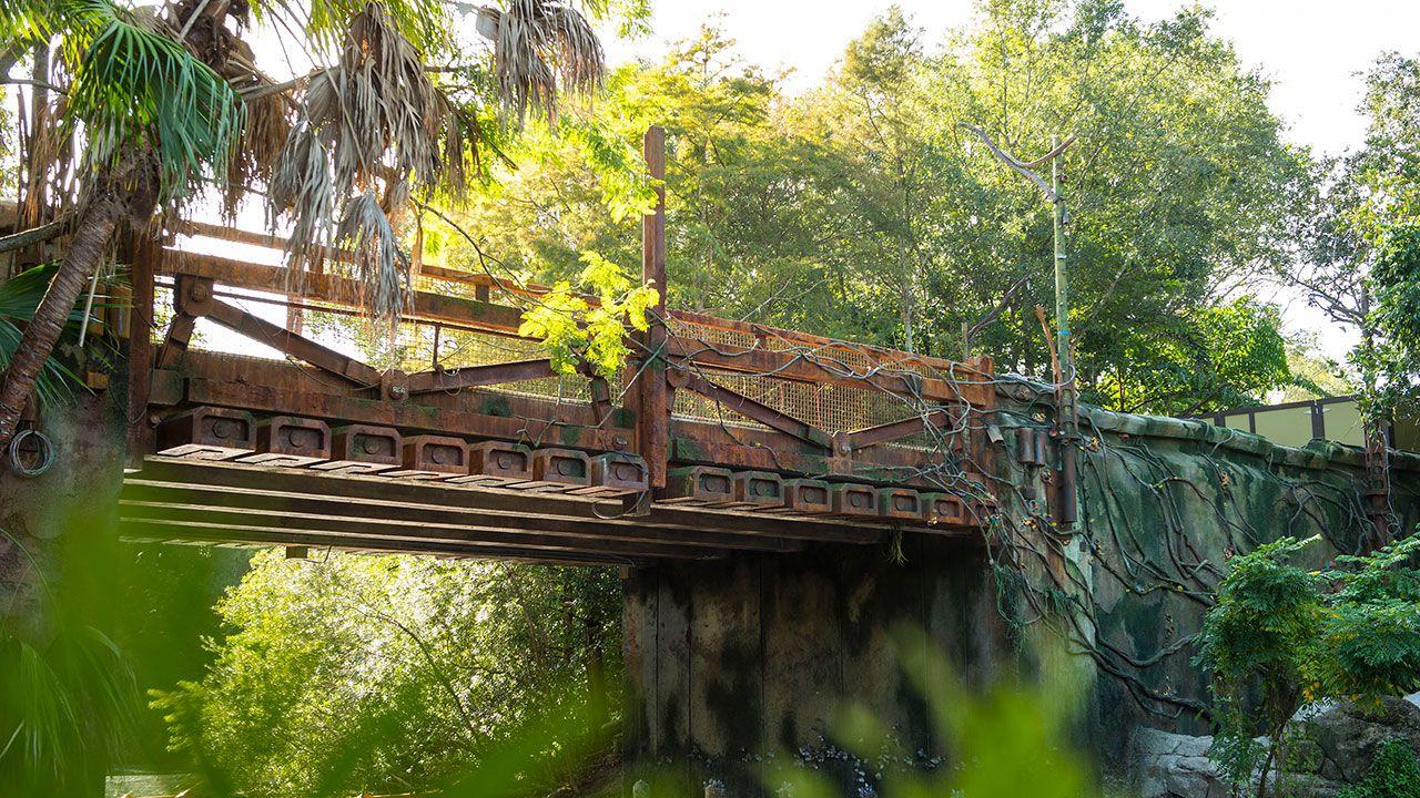 Avatar Land Bridge