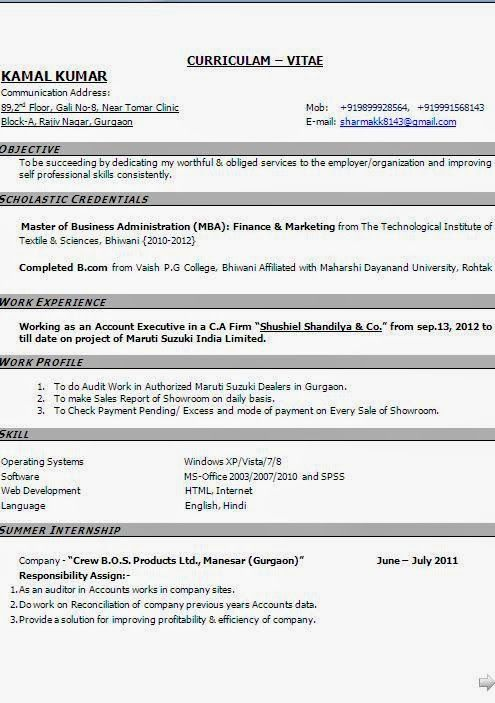 cool resumes templates beautiful excellent professional