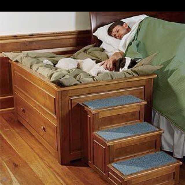 This takes spoiling to a new level. Yet would free up the bed for me... Tempting.