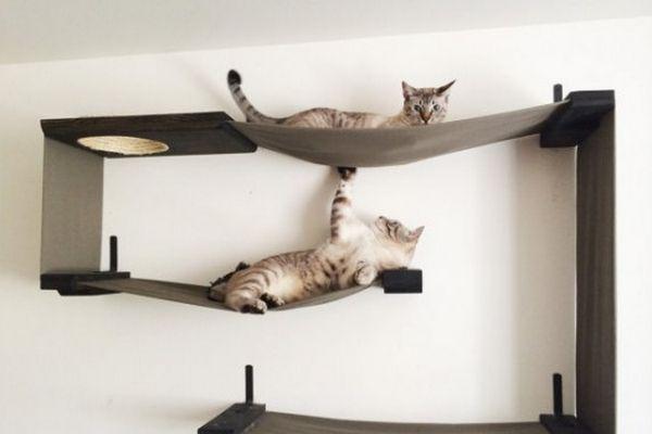 meubles chat 2 0 pinterest parcours couple et insolite. Black Bedroom Furniture Sets. Home Design Ideas