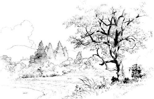 Kazuo Oga Buscar Con Google 美術 スケッチ 画家
