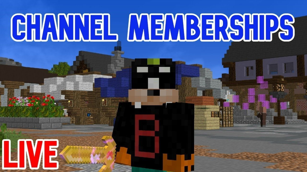 Channel Memberships Are Live Leveling Pets Hypixel Skyblock In 2020 Pets Memberships Channel