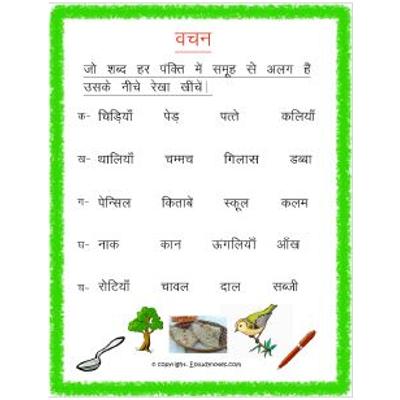 Hindi Grammar Vachan Write Odd One Out Worksheet 1 Grade 3