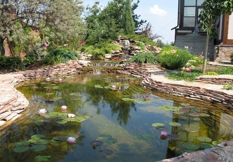 Cascade bassin de jardin en 18 id es de conception outdoor ponds - Cascade bassin jardin ...