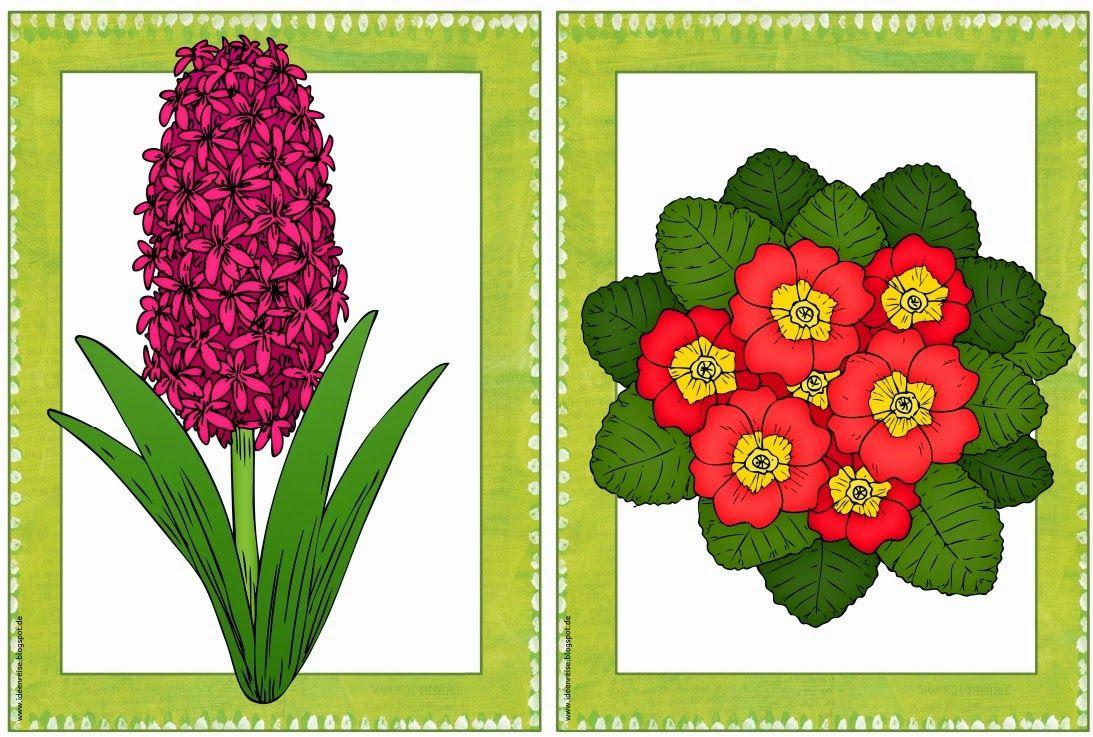 Ideenreise: Frühlingshafte Pflanzen (Zusatzmaterial) | My IF class ...
