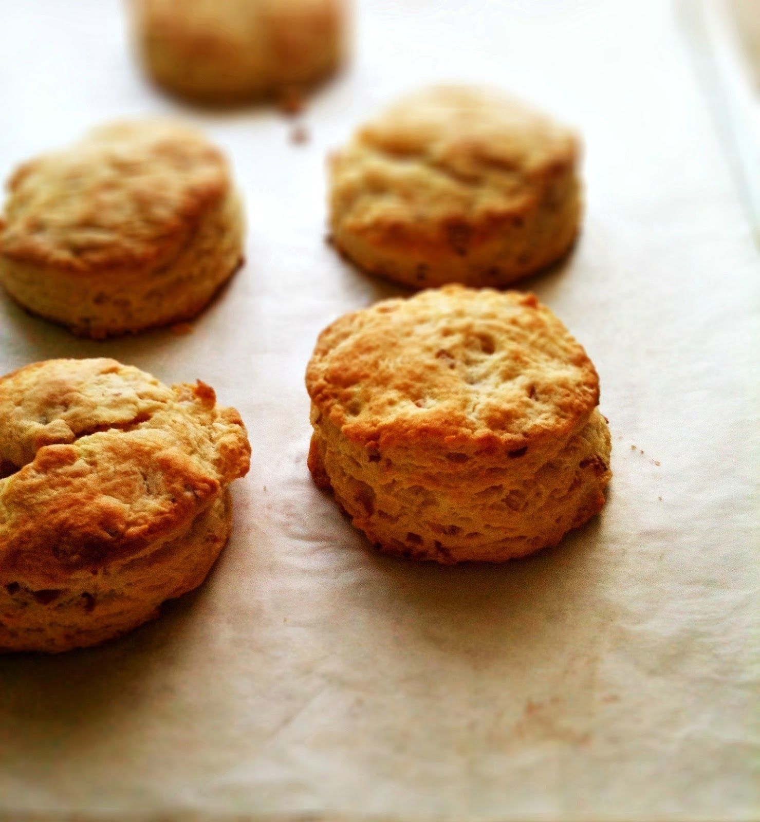 Smitten Kitchen Pancakes: Smitten Kitchen: Maple Bacon Biscuits