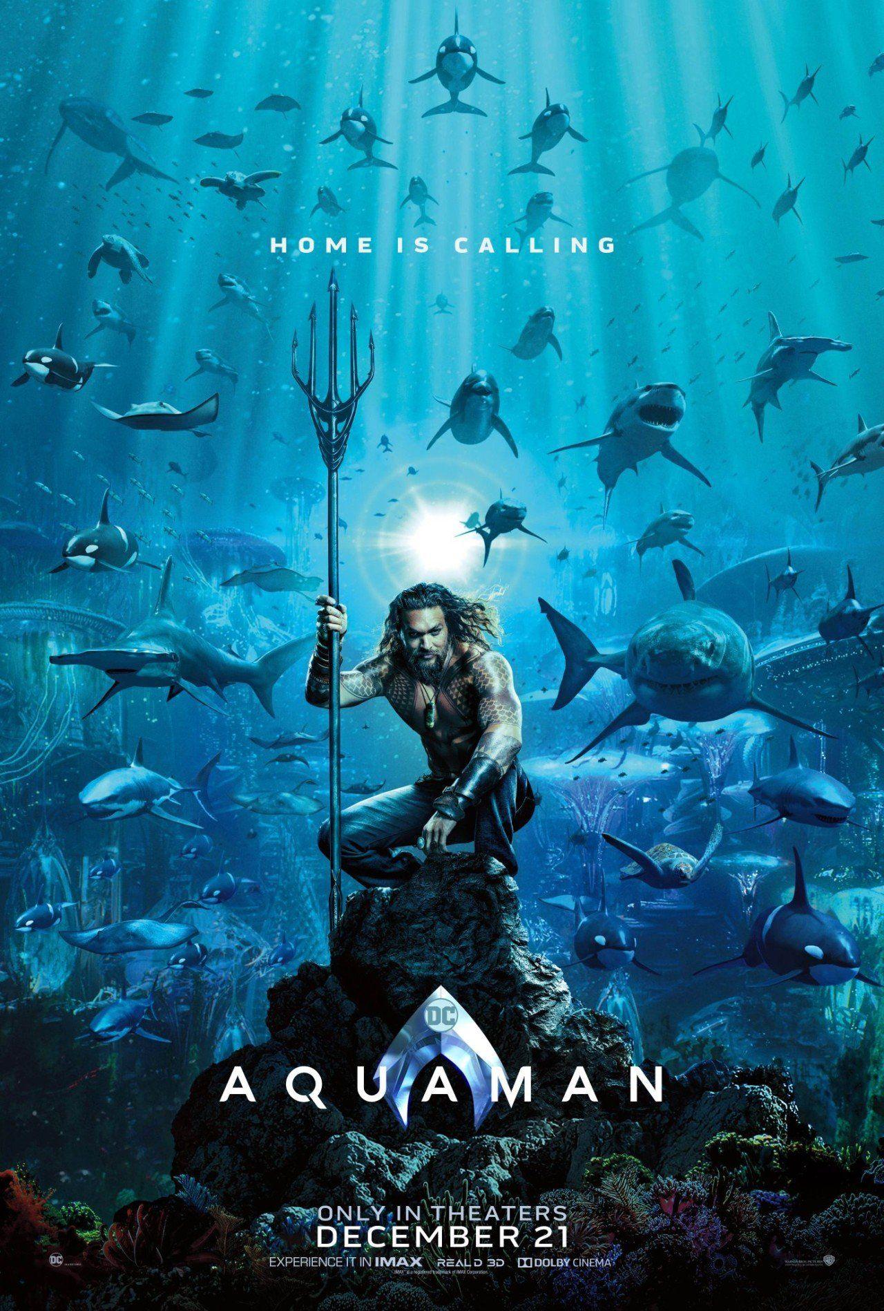 Hasil gambar untuk Film Aquaman 2018 poster
