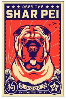 Shar Pei Mini Poster - Obey the Shar Pei