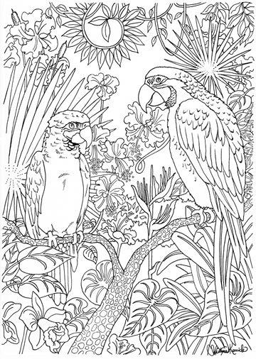 Kleurplaten Voor Volwassenen Handen.Volwassen Kleurplaten Papegaaien Kleurplaten Dibujos En Pintar