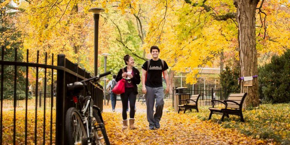 The 50 best colleges for your money College fun