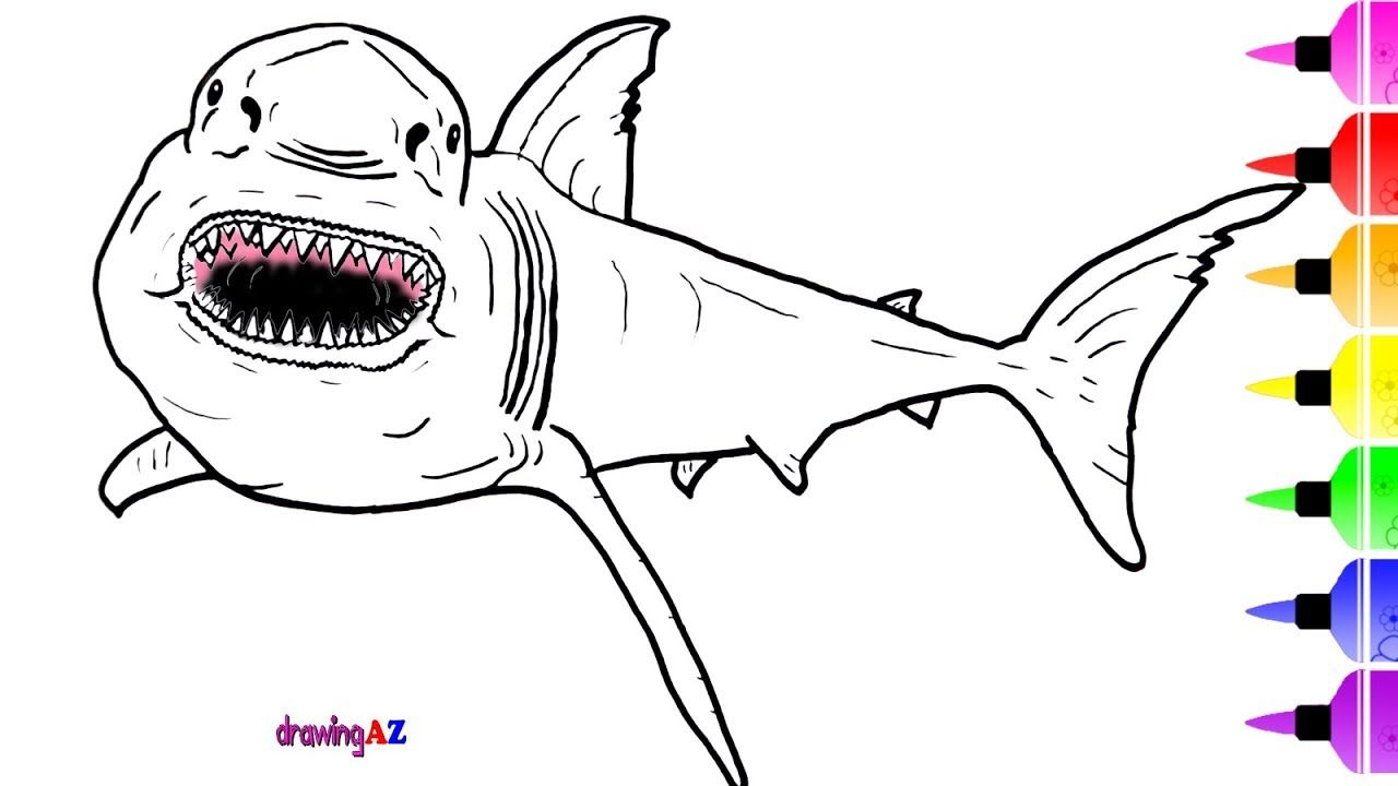 Great White Shark Coloring Pictures Shark Coloring Pages