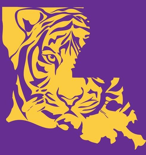 louisiana baby!!!....great stencil for a shirt or painted on a man cave's  wall!   lsu tigers football, lsu tigers, lsu  pinterest