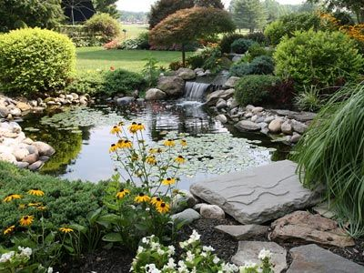 fish pond accessories When looking to buy fish pond accessories to start  and build your own garden fish pond, there are three main items you should  have at ... - Modern Earth Design: Can It Be? : Landscaping Jardín Pinterest