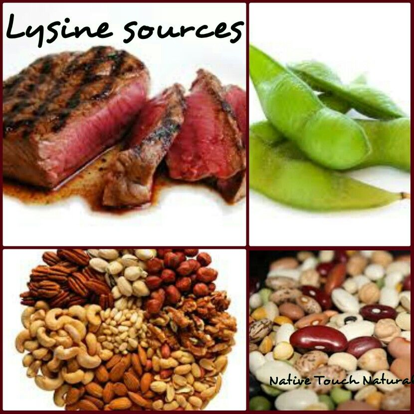 Lysine Natural Food Sources