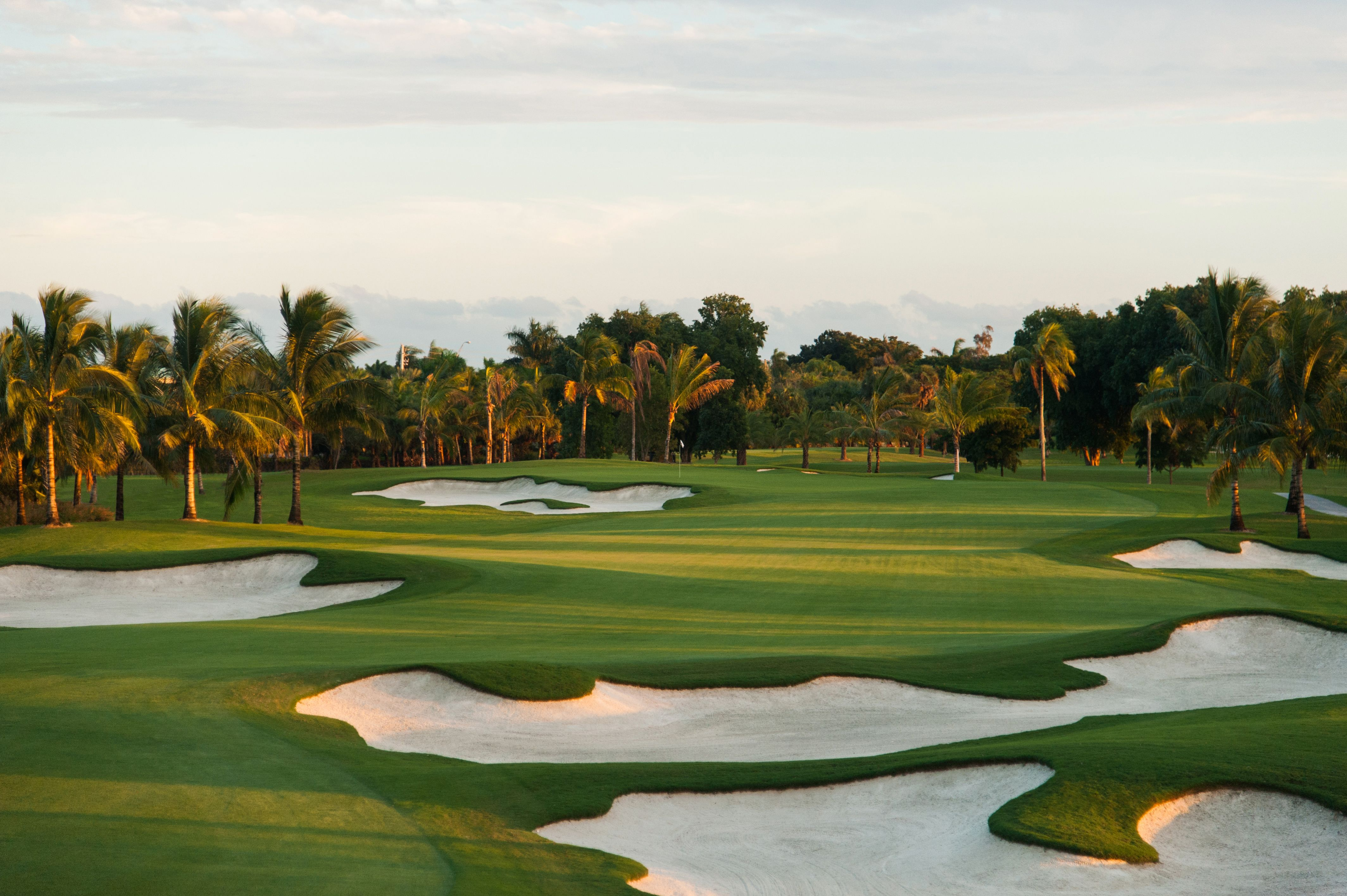 The brandnew blue monster golf course favorite golf courses