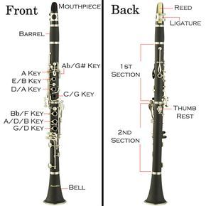Clarinet Diagram Plus The Basics On How To Get Started Playing The Clarinet Clarinet Clarinet Music Clarinet Player