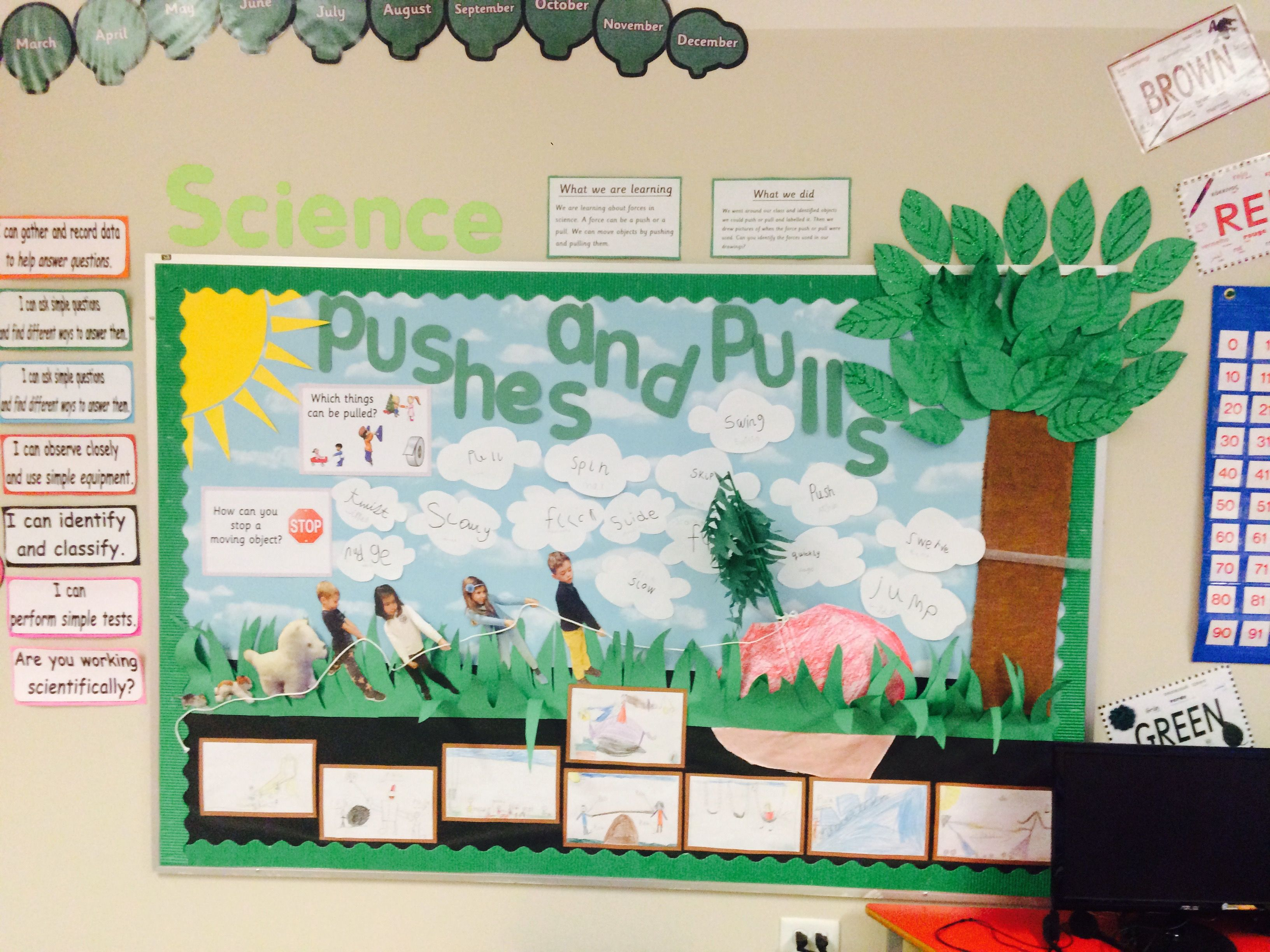 Pushes And Pulls Science Classroom Display
