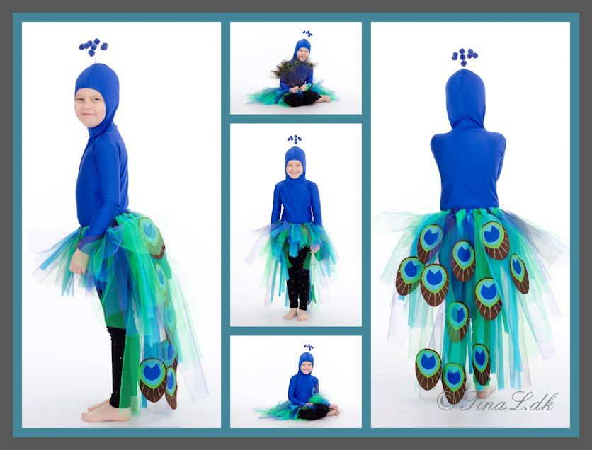 My daughter as a Peacock in a homemade costume made by me.