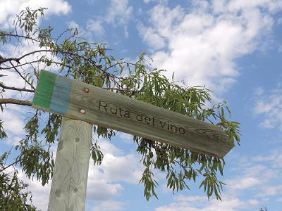 Ruta del Vino Somontano: Sigue la esencia de una D.O. que marca la diferencia en cuanto a vinos, y llega hasta Bodegas Obergo.