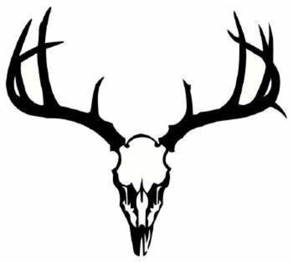 dear skull deer skull image vector clip art online royalty free rh pinterest com deer skull clip art graphics deer skull and antlers clipart