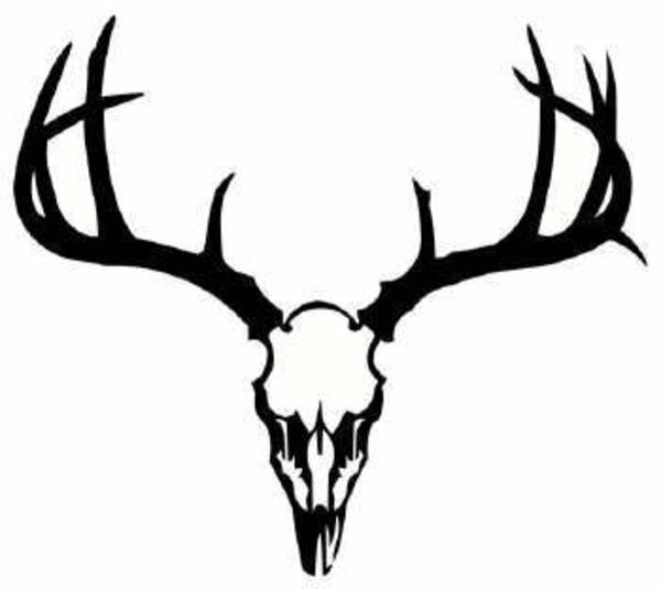 Dear Skull Deer Skull image vector clip art online