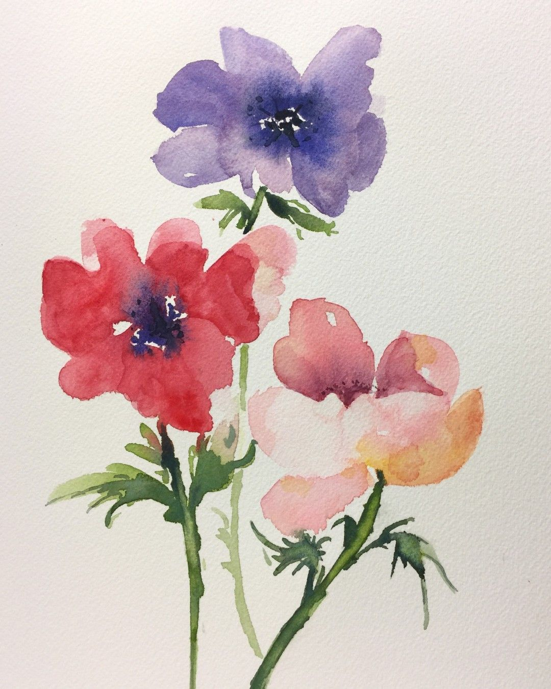 Pin By Karin Lauria On My Watercolor And Illustration Flower Art