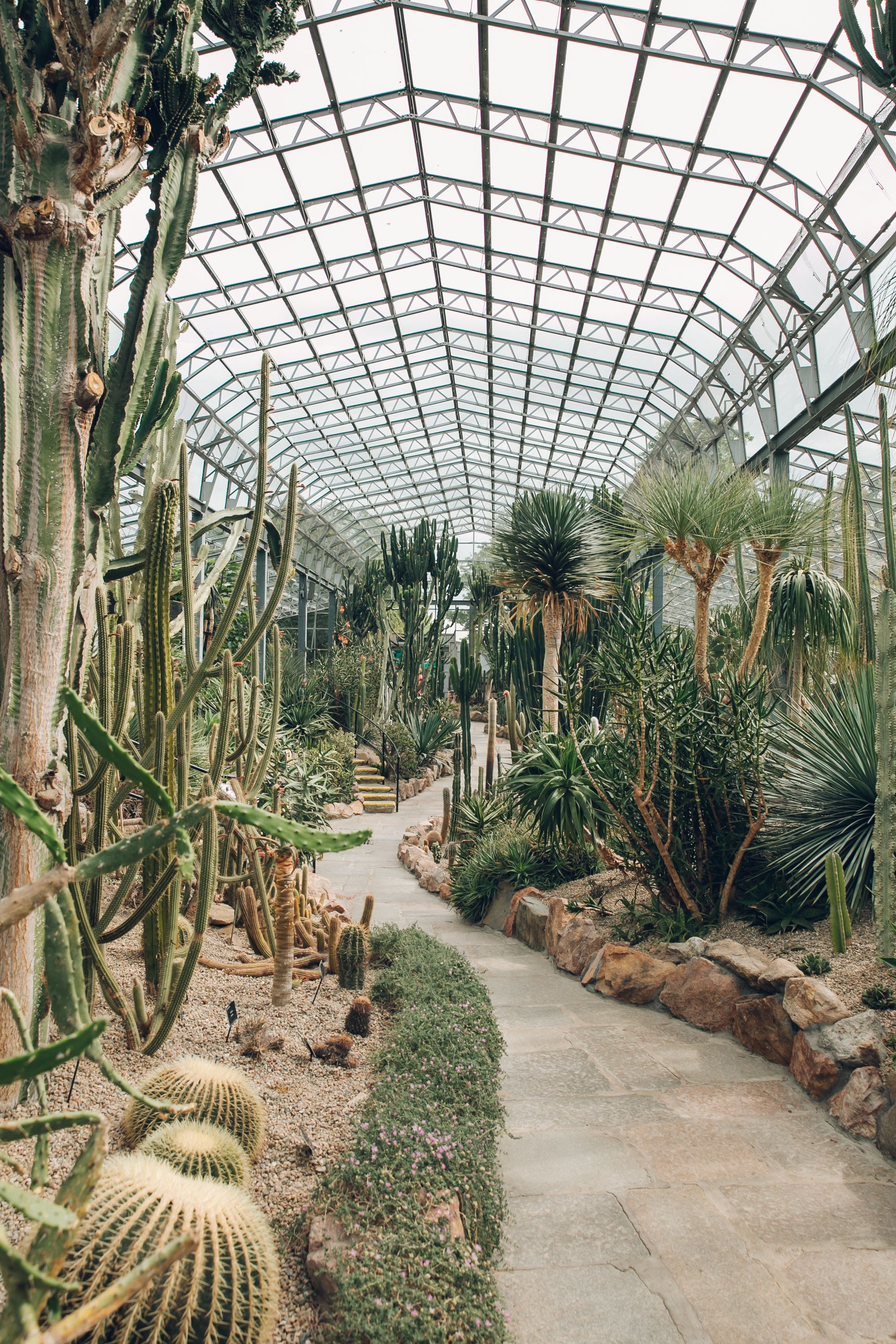 The David Welch Winter Garden, Duthie Park in Aberdeen — Scotland is part of Winter garden Indoor - Continuing our tour of Scottish greenhouses
