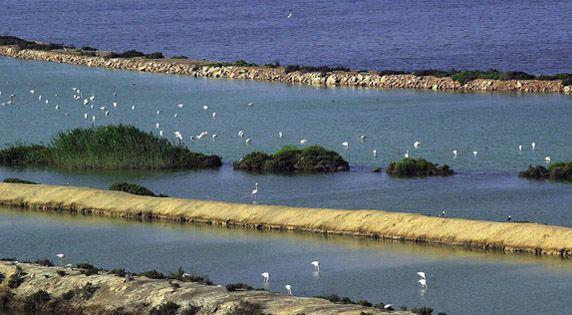 San Pedro del Pinatar Salt Lakes is a beautiful landscape of #Murcia. #Spain
