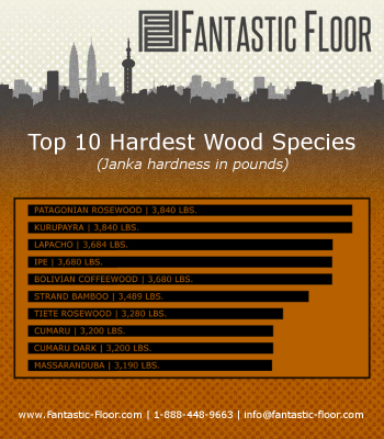 Faq What Is The Most Durable Hardwood Flooring Available Infographic Hardwood Woodworking Wood Species