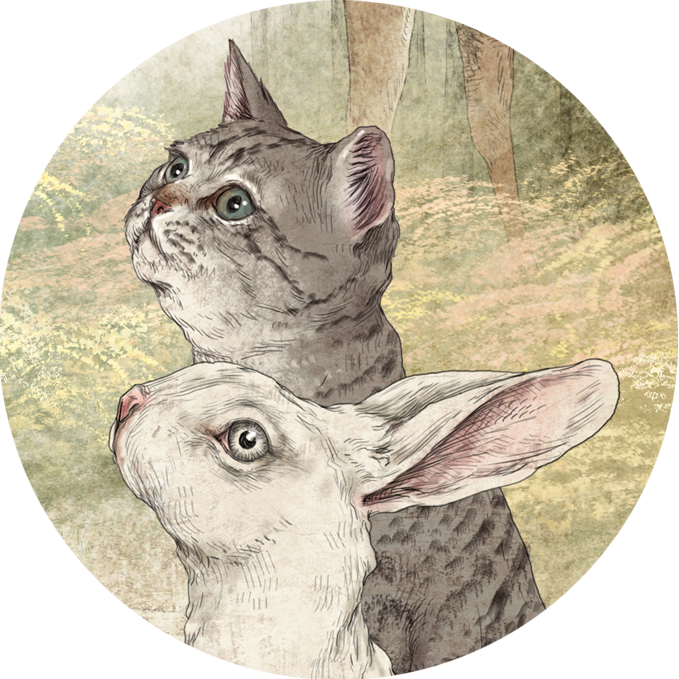 Картинки на год кролика и кота