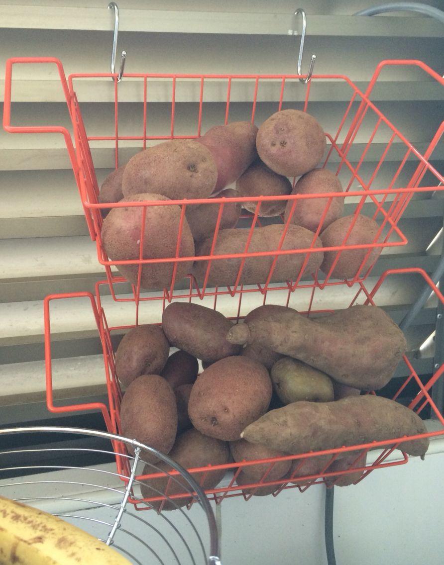 Canstos y ganchos de casa & ideas, excelente para optimizar uso de loggia de dpto y guardar verduras!