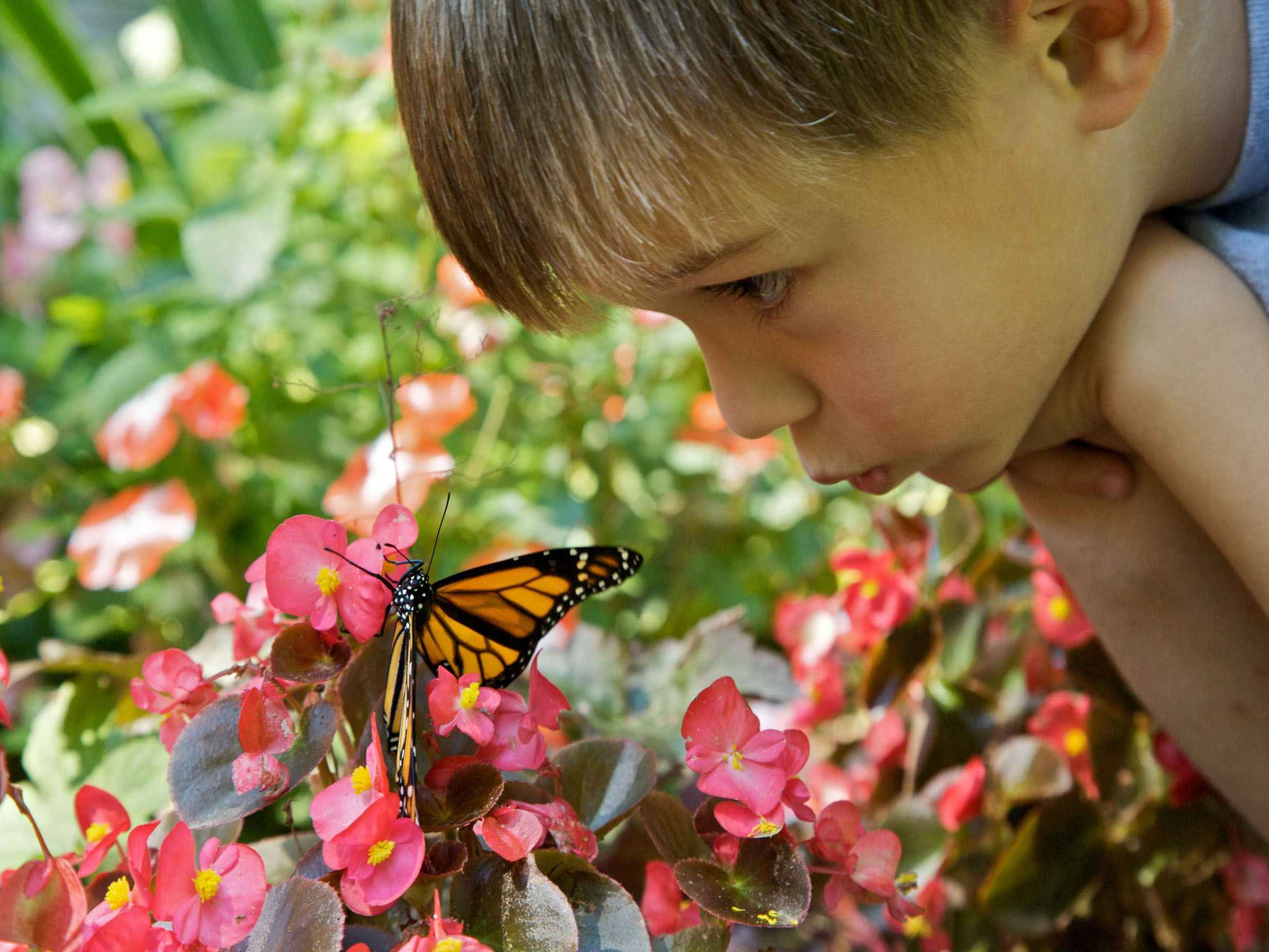 How To Support Send Children In Early Years Early Years Careers Family Garden Exercise For Kids Nature Deficit Disorder
