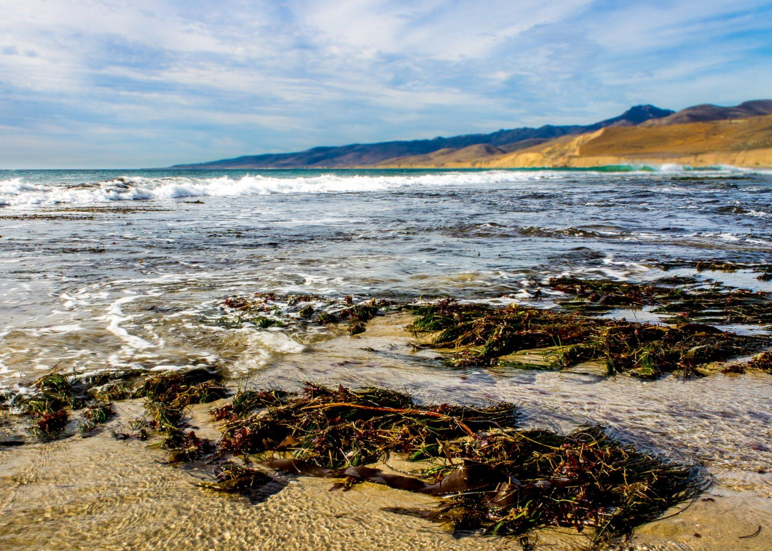 Moonstone Beach Park Camping The Best Beaches In World