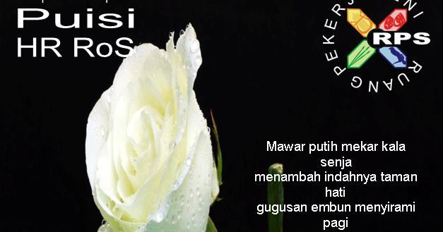 Gambar Bunga Mawar Terluka Beranda Puisi Kumpulan Puisi Hr Ros Mawar Putih Ini Untukmu Download Nasib Tragis Bunga Mawar Meaningful Li Di 2020 Bunga Mawar Gambar