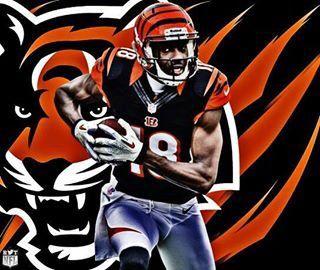 Whodey Cincinnati Bengals Bengals Cincinnati