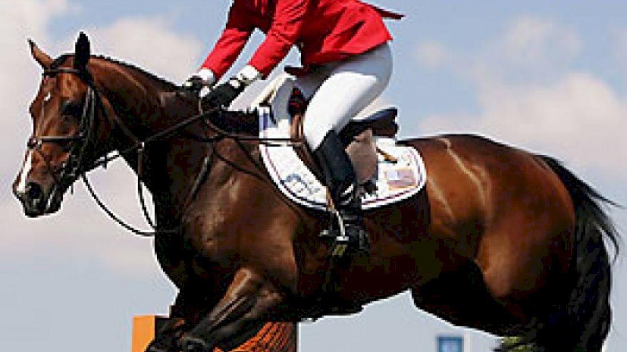 فوائد تعلم الرماية وركوب الخيل Horse Riding Horses Riding