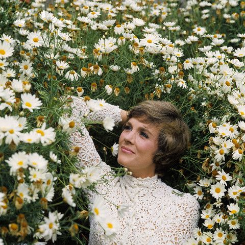 Laying gracefully in a field of daisies. Typical Julie Andrews.